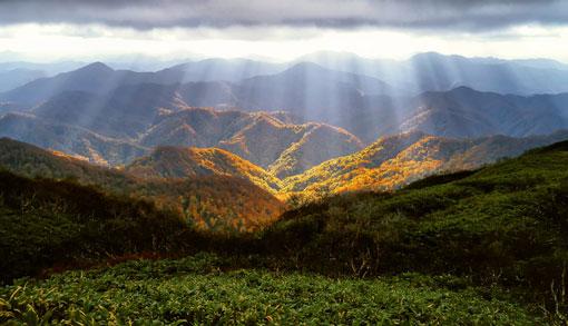 As colinas verdes