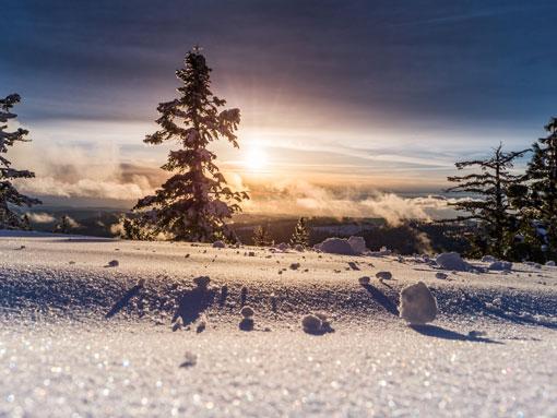 Um campo coberto de neve