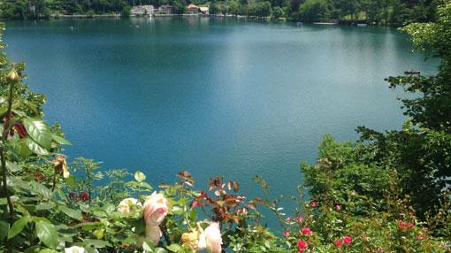 Um lago rodeado pelas árvores e flores