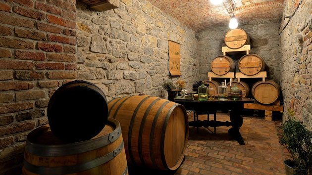 A wine cellar with lots of barrels