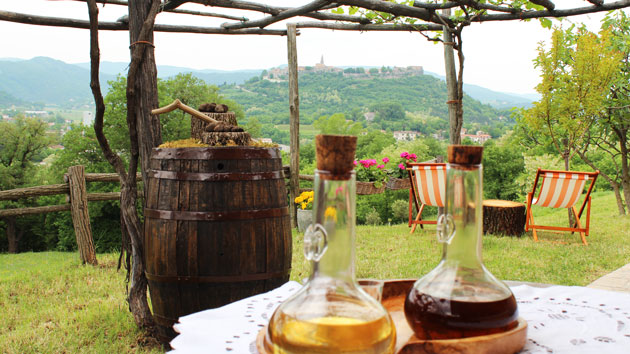 A table with two bottles of wine in the countryside