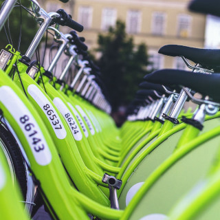 Many green bikes parked in a row