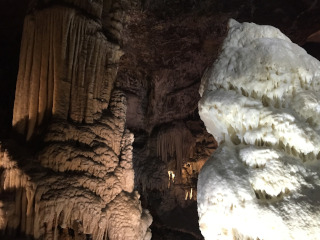 Cave formations in the Postojna Cave Park