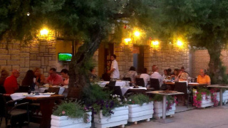 Restaurant's terrace with a tree in the middle, full of people