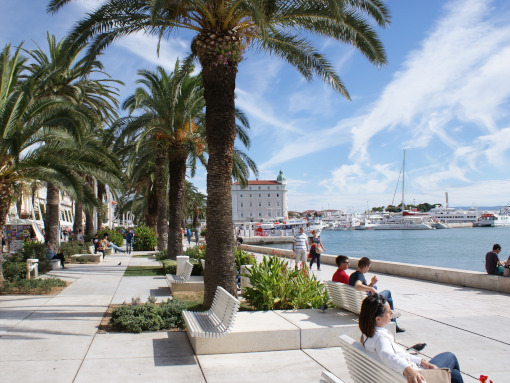 Split's boardwalk with palm trees and benches