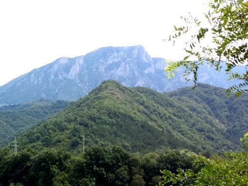 Uma montanha com muita floresta e vegetação