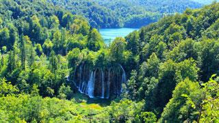 Una grande cascada rodeada por el bosque
