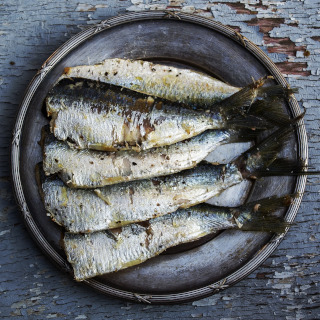 Four salted sardines served on a plate