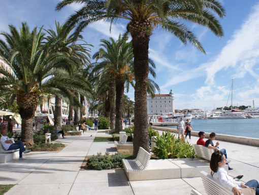 Marble pavement with benches and palm trees