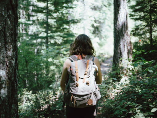 A girl with a backpack wandering the woods