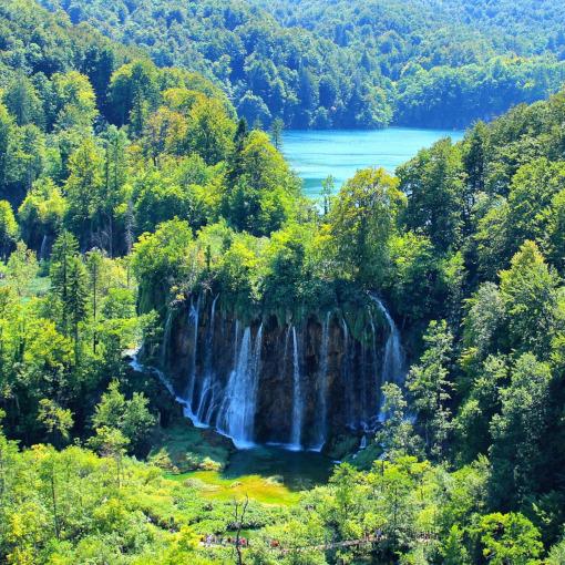 Cachoeiras rodeadas pela floresta